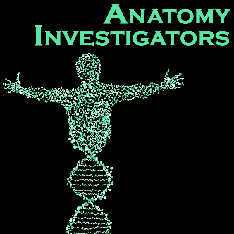 Anatomy Investigators